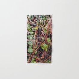 Freezing Rain On Green Ivy Vines Hand & Bath Towel