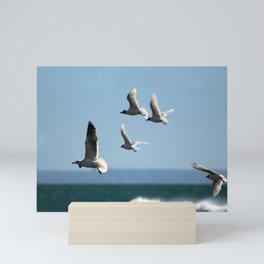 Seagulls flying over the sea Mini Art Print