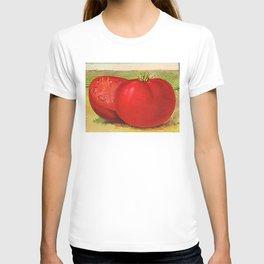 Vintage Illustration of a Beefsteak Tomato (1905) T-shirt