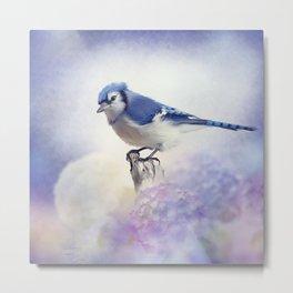 Blue jay in Flower garden,watercolor painting Metal Print