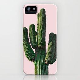 Desert Cactus in Pink iPhone Case