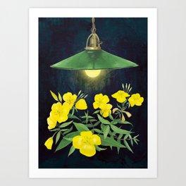 Primrose and a lamp Art Print
