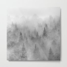 Foggy sunrise. BW. Pinsapos into the woods. Square Metal Print