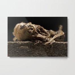 Decay_1 Metal Print