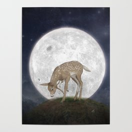 Night Deer Poster