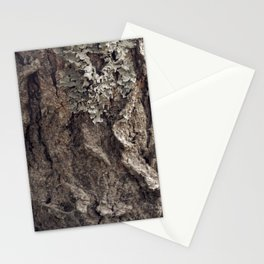 Tree Skin 1 /4 Stationery Cards