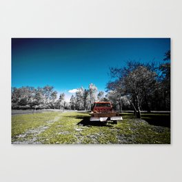 Remnants of Color Canvas Print