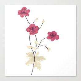 Armenian Cranesbill Flower Canvas Print