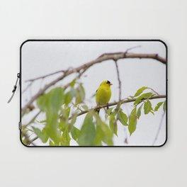 Backyard Bunch: Bird Collection Laptop Sleeve