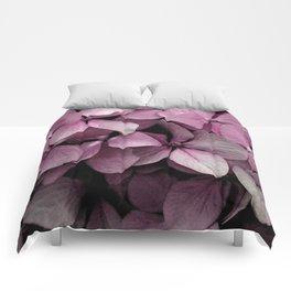 Pink Hydrangeas Comforters