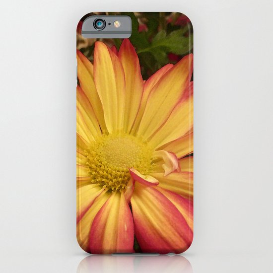Fiery Flower iPhone & iPod Case