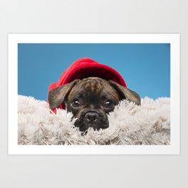Sulky puppy Art Print