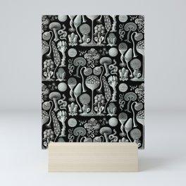 Ernst Haeckel - Mycetozoa (black) Mini Art Print