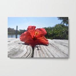 Hibiscus on the Docks Metal Print