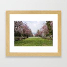 Lake Como in Springtime Framed Art Print