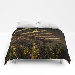 The Night Sky in Costa Rica Comforters