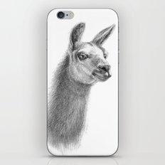 Llama SK070 iPhone & iPod Skin