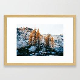 Enchantments Framed Art Print