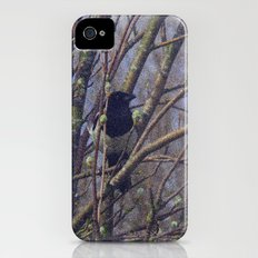 Bird Song Slim Case iPhone (4, 4s)