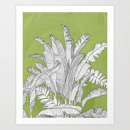 Banana Leaves Illustration - Green Art Print