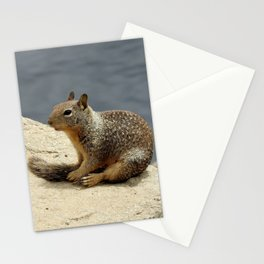California ground squirrel, Sequoia National Forest, California Stationery Cards