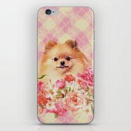 Cute Pomeranian German Spitz wiht Flowers iPhone Skin