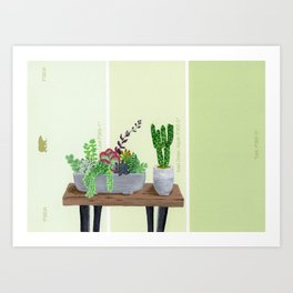 Cacti and Succulents on Greens Art Print