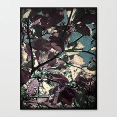 Cool Fall Leaves Canvas Print
