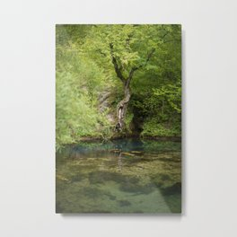 River spring in the forest Metal Print
