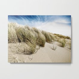 Sea and Sand, Kellogg Beach, Crescent City, California. Metal Print