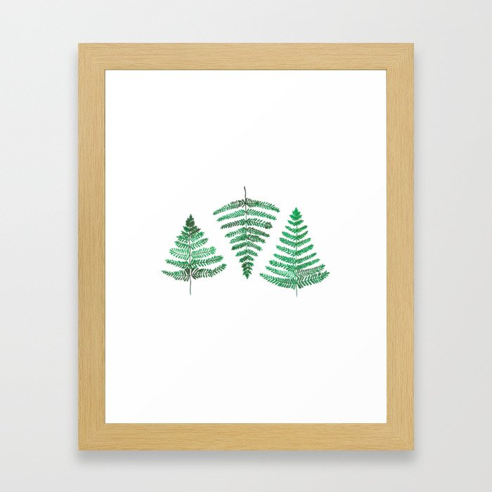 Fiordland Forest Ferns Framed Art Print