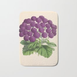 Double Cineraria Original hand-coloured print drawn and lithographed by Fitch Bath Mat