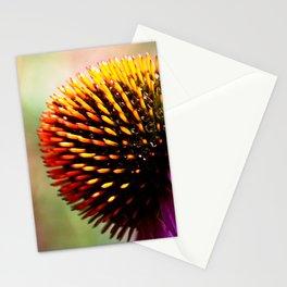# 199 Stationery Cards