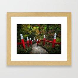 Clyne gardens in Swansea Framed Art Print