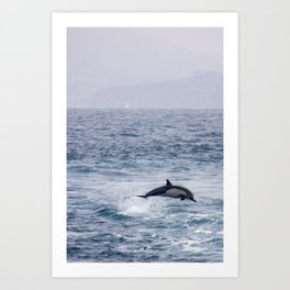Leaping Common Dolphin Art Print
