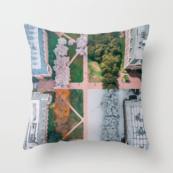 UW Cherry Blossoms: 4 Seasons Throw Pillow