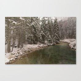 Picturesque Triglavska Bistrica River Canvas Print