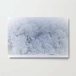 First Snow Fall Fresh Snow on Trees Nature Photography ~ Winter Hush Metal Print
