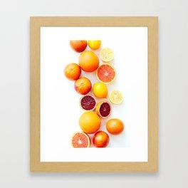 Winter Citrus 2 Framed Art Print