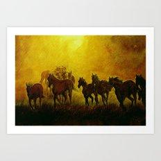 Horses at sunset Art Print