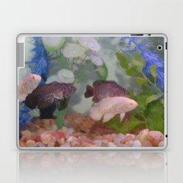 Four Oscars swimming in an aquarium (Painted) Laptop & iPad Skin