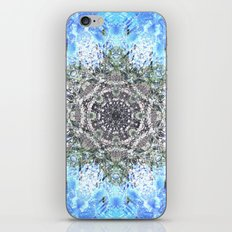 Arizona Cactus iPhone & iPod Skin