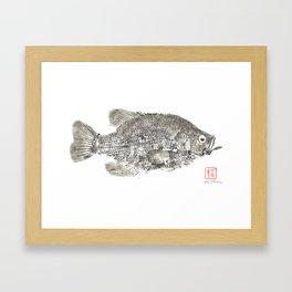 Crappie Gyotaku Framed Art Print