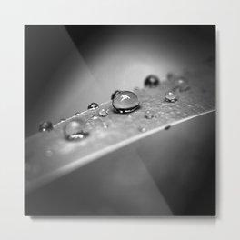 Simple Drops 2 Metal Print