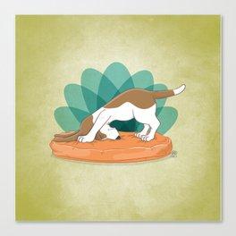 Basset Hound Downward Dog Canvas Print