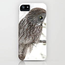 Great grey owl close up iPhone Case