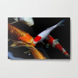Koi Fish Tancho Metal Print