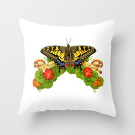 Old World Swallowtail Butterfly Throw Pillow