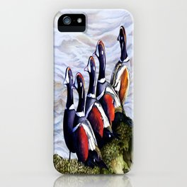 Harlequinn Ducks of LBI iPhone Case