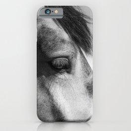 Horse Portrait | Animal Photography iPhone Case